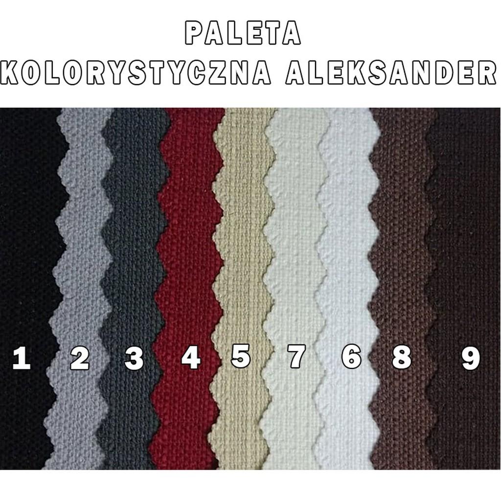 PALETA ALEKSANDER